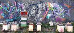 Au bonheur des abeilles - Bee art (chriskatsie) Tags: graffiti honey miel ruche bee art streetart ville agriculture