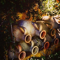 Garden Decor: Urns along the wall While I can appreciate both traditional and modern garden elements, there is something about garden decor that recalls the past that touches something fundamental in the human spirit. I spotted these ersatz Greek amphorae (dewelch) Tags: