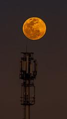 Supermoon (vaidyarupal) Tags: night sky nightscapes cityscapes city citylights cityandarchitecture moon moonrise fullmoon newmoon blue bluehour vaidyarupal rupalvaidya ahmedabad gujarat india