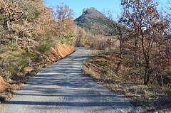 Chemin forestier (RarOiseau) Tags: alpesdehauteprovence route paysage forêt montagne hiver vaumeilh ombre