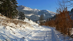 Mountain Road (superhic) Tags: winter snow mountain road sky trees zima sneg planina nebo put