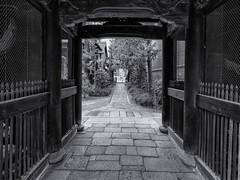 Through the gateway (Tim Ravenscroft) Tags: gateway entrance path choshoji temple kyoto japan hasselblad hasselbladx1d monochrome blackandwhite blackwhite
