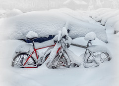 For better or for worse... :)) Happy Valentine! ) (Natalia Medd) Tags: snow bicycles cars parking february valentine