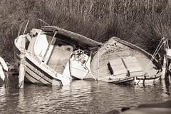 deux épaves ensemble (guy dhotel) Tags: bateaux boats épaves sunk soleil