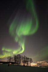 aurore tromsø (jarguel) Tags: aurore aurora northernlights norvège norway astronomie astronomy night nuit lights fuji fujixt1 samyang12mm tromsø