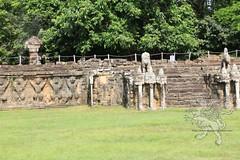 Angkor_terrazza degli elefanti_2014_15