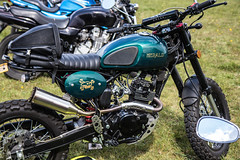 So low Choppers-Herald (Caught On Digital) Tags: bobber chopper custom herald solowchoppers stanton