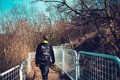 KRIS7971 (Chris.Heart) Tags: erdő buda budapest túra természet forest nature hiking