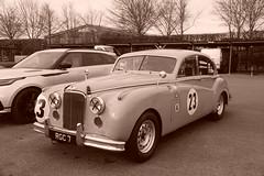 Jaguar MkVII 1956, HRDC Track Day, Goodwood Motor Circuit (2) (f1jherbert) Tags: sonya68 sonyalpha68 alpha68 sony alpha 68 a68 sonyilca68 sony68 sonyilca ilca68 ilca sonyslt68 sonyslt slt68 slt sonyalpha68ilca sonyilcaa68 goodwoodwestsussex goodwoodmotorcircuit westsussex goodwoodwestsussexengland hrdctrackdaygoodwoodmotorcircuit historicalracingdriversclubtrackdaygoodwoodmotorcircuit historicalracingdriversclubgoodwood historicalracingdriversclub hrdctrackday hrdcgoodwood hrdcgoodwoodmotorcircuit hrdc historical racing drivers club goodwood motor circuit west sussex brown white sepia bw brownandwhite