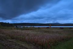 Lapland_Day2_Muonio_20180911_IMGS4805_s (Andrew-Holloway) Tags: lapland muonio autumn torassieppi