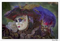 Carnaval vénitien de Remiremont 2019 : 13 (C. OTTIE et J-Y KERMORVANT) Tags: portrait carnaval carnavalvénitien remiremont vosges lorraine france