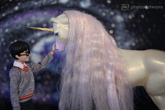 you're safe with me (photos4dreams) Tags: harrypotter mattel photos4dreams p4d photos4dreamz doll puppe barbie joannekrowling saga bücher buch book books hogwarts zauber zauberer magic magisch 16 figures figuren danielradcliffe unicorn einhorn