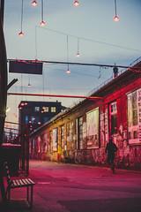 The world is yours, don't run from it (mripp) Tags: berlin street art streetshot igstreet streetshooter streetlife streetgrammer urbanphotography streetvision urbanaisle streettogether streetleaks aspfeatures inpublicsp lensonstreets capturestreets fromstreetswithlove streetphotoclub urbanshot streetview lensculturestreets storyofthe