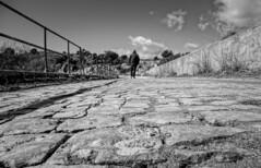 Camino (Lea Ruiz Donoso) Tags: blanco y negro