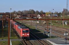 DSC_0871 (LJet307) Tags: db dsb baureihe 185 dänemark tinglev zug eisenbahn