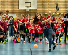 _DSC1441 (Wårgårda IBK) Tags: floorball innebandy wikb wårgårdaibk avslutning vårgårda fest
