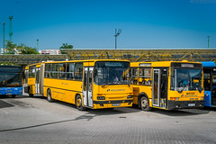 GXW-240 [Volanbusz] (wylaczpantedlugie) Tags: ikarus volanbusz kelenfold autobuszallomas
