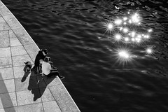 Stars (Leipzig_trifft_Wien) Tags: light shadow monochrome black white bnw blackandwhite street streetphoto people person human lightandshadow