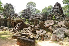 Angkor_Ta_Som_2014_36
