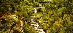 Little River Falls, Fort Payne, Alabama (Evangelio Gonzalez MD) Tags: littleriverfalls fortpayne alabama