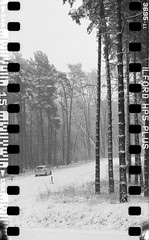 Bronica SQ-A-060-010 (michal kusz) Tags: bronicasqa zenzanon 110 135 35mm 120to135 frame film bw blackandwhite landscape forest format monochrome medium monochromatic trees snow poland