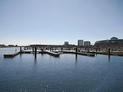 Shimmer (ancientlives) Tags: chicago illinois il lake lakemichigan lakefronttrail burnhamharbour harbour moorings soldierfield downtown landscape city cityscape skyline sky bluesky water walking saturday march 2019 spring