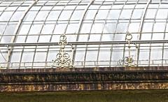 UK 2018 1506 (Visualística) Tags: uk unitedkingdom reinounido gb granbretaña greatbritain escocia scotland edimburgo edinburgh ciudad city stadt urbano urban jardínbotánico jardín garden botanicalgarden botanicgarden royalbotanicgardensedinburgh realjardínbotánico