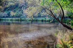 Embalse de la florida, Asturias (ccc.39) Tags: asturias pilotuerto laflorida tineo narcea agua árboles reflejos embalse water reflections