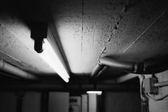 Basement neon. (35mm) | Agfaphoto APX 400. (samuel.musungayi) Tags: agfa agfaphoto apx 400 candid film 35mm 24x36 135 analog argentique negativo negative négatif negatif scan black white blackandwhite noir blanc noiretblanc monochrome mono life light samuel musungayi samuelmusungayi photography photographie fotografia yashica t5 carl zeiss test shot