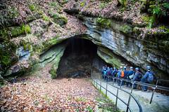 Descending into the Cave (tedwebbphoto) Tags: mammothcave nationalpark mammothcavenationalpark cave kentucky ky nps explorekentucky nationalparkgeek historicentrance cavingtour outdoor stairs tour