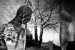 I guardiani della memoria (Massimo Tolardo) Tags: bw blackandwhite mitoraj pompei mitorajapompei fotografiasurreale surrealismo fujifilm fujifilmxt2