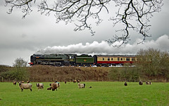 Britannia In Cheshire (ARG_Flickr) Tags: 70000 britannia