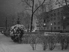 Evening time (wojciechpolewski) Tags: evening winternight winter snow snowyevening snowyweather night nightlights estate monotone monochromatico mono greyscale monochrome blackandwhite blanconegro blackwhite photos photo wpolewski poland polska kedzierzynkozle streetview streetphotographer streetlights street