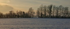 Nature speaks (catha.li) Tags: lgg4 sweden mist naturewatcher soe