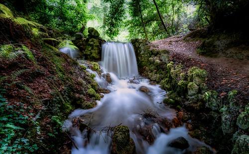 Waterfall in Birr Castle Gardens