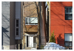 3 in a row and a tree (mcfcrandall) Tags: house tree new infill windows shadows snow kingstonroad toronto orange brown grey