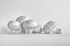 Mushrooms in High Key (Leslie Victor) Tags: img9967mr mushrooms highkey foodphotography minimal blackandwhite monochrome stilllife