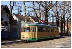 Tram SRS - 2019-14 (olherfoto) Tags: tram tramcar tramway strasenbahn srs schöneiche villamos düwag