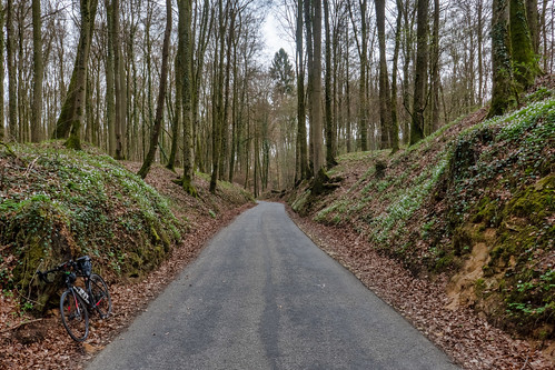 Road between Septfontaines and Schweich