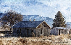 old farm home Howe idhao (Pattys-photos) Tags: neglected decayed abandoned broken ramshackle dilapidated derelict house barn howe idaho pattypickett4748gmailcom pattypickett