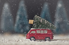 Christmas tree (Ali Llop) Tags: christmas holiday car tree white decoration winter new celebration season xmas transportation toy year greeting red background festive snow present wood vehicle fir miniature gift december transport pine wooden drive small card truck green retro handmade newyear rustic christmastree nobody frozen textured cute