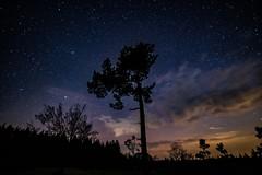 Menkepark (clemensgilles) Tags: availablelight amazing nachthimmel night sternenhimmel stargazing longexposure astrophotographers astrofotographie nightphotography eifel germany beautiful