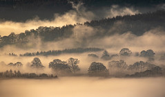 Misty Start (Peter Quinn1) Tags: mist peakdistrict mistylayers dawn morning december derwentvalley riverderwent derbyshire curbadgap