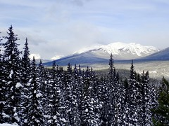 Bow Valley near Lake Louise (davidparratt) Tags: bowvalley alberta winter snow