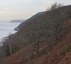 Footsteps of the Poets (EmPhoto.) Tags: uk southwestcoastpath swcp glenthornecliffs countisburycove exmoor emmiejgee landscapepassion sonya7r wild unspoiled winter hike hiking samueltaylorcoleridge williamwordsworth footstepsofthepoets