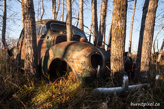 Reclamation 2 (burntpixel.ca) Tags: canada manitoba winnipeg photo photograph rural fine art patrick mcneill burntpixel beautiful amazing landscape canon 50d canon50d wander komarno trees car automobile rurex abandoned relclamation rust rusting forgotten old overgrowth relic history