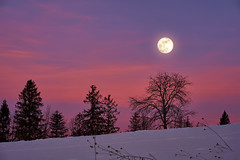 Moon meets the sunset :) (Marcin Frączek) Tags: sky snow nature winter mountains mountainouslandforms cloud mountainrange highland tree moon moonlight sunset evening hill landscape sunrise horizon sunlight atmosphere dawn nationalpark dusk ice valley zakopane tatramountain giewont poland podhale