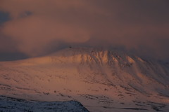the first morning light on Gaustatoppen (fynnspeckmann1) Tags: sunrais sonnenaufgang light licht sun sonne yellow gelb sky himmel wolken clouds snow schnee mountasin berg out dark joy early früh norwegen norway norge rjukan gaustatoppen gaustablikk blue blau ski skiing top spitze