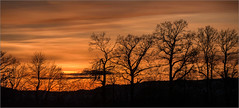 Ein Wintertag / A winter day (ludwigrudolf232) Tags: sonnenuntergang bäume