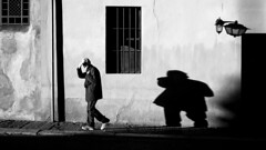 The Big Shadow (Mattiii photo) Tags: street streetphotography streetphoto streetshot streetphotographer streets streetitalia streetph streetshots streetphotograph streetlife streetparma streetimage streephotographer strada streetminimal streethsot streetpassioneadwards blackandwhite blackandwhitephotography blackandwhitephoto blackandwhiteshot blackandwhitephotographer blackwhite biancoenero bnw biancoeneroforever bnwphotography bnwphoto bnwshot biancoenerofoto shadow shadows shot big bigshadow person one walking great parma italia italy italianstreetphotography italianstreetphotographer italian photographer city cityscape